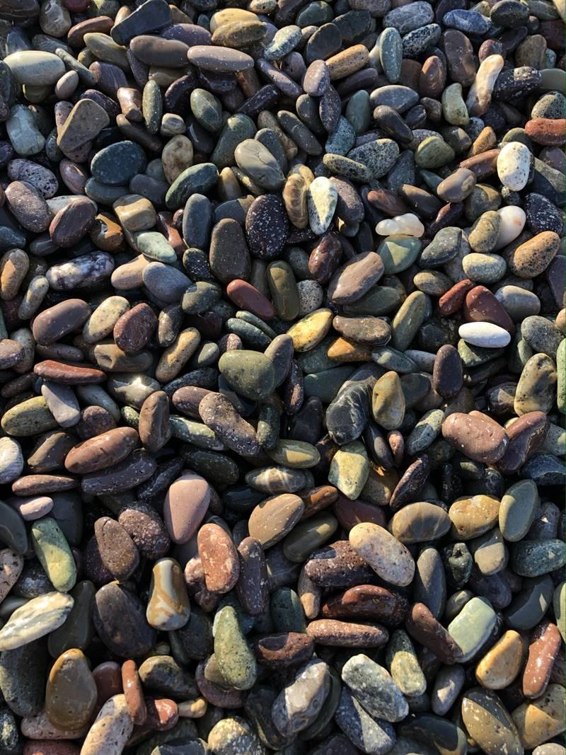 Mini Exotic Pebbles